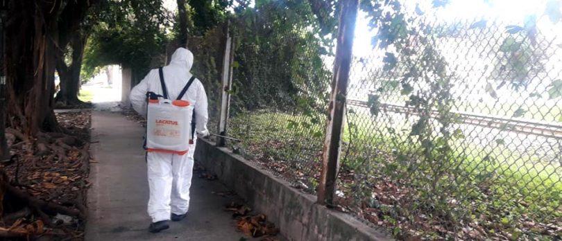 Karina Murúa, prevención dengue