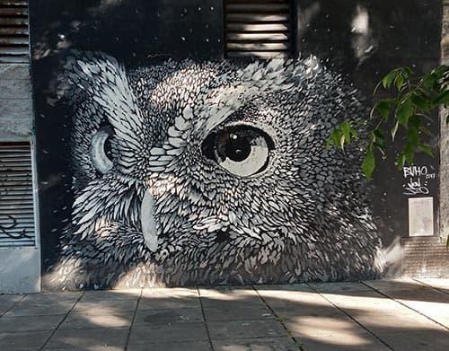 Arte urbano Coghlan