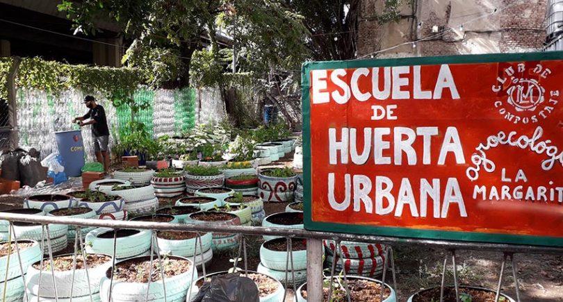 Escuela Huerta Urbana