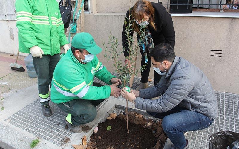 Plantación árbol nativo en Villa del Parque
