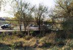 Arboretum del Parque Sarmiento