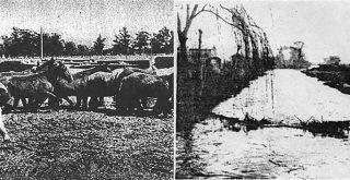 Arroyos y lagunas villa pueyrredón